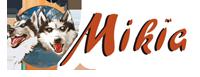 Mikia - Chien de traineau et gite