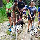 Balades avec chiens nordiques et trotinette de montagne en Savoie, www.mikia.org